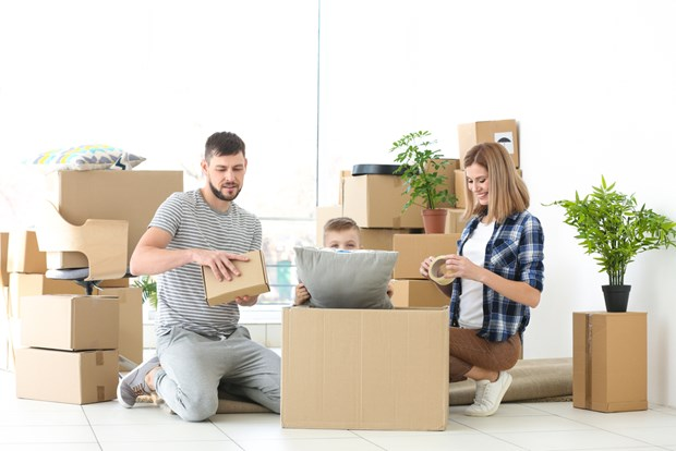 Tips To Relocate plants Safely when House Shifting