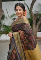 Vidya Balan Photos in Saree at Handloom Promotion TollywoodBlog