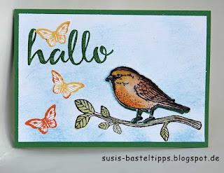Gucklochkarte mit Big Shot, Stampin Up Stempelset Vogelhochzeit