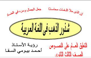 التعليق العام علي النصوص للصف الثالث الثانوي 2017