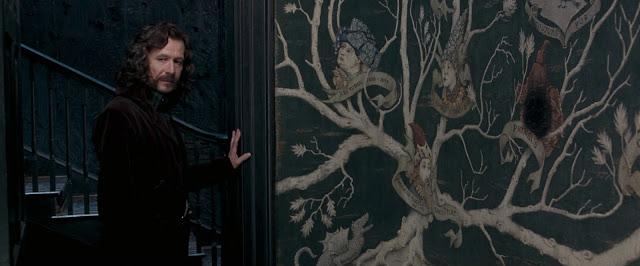 Сириус Блек в Хари Потър и орденът на феникса