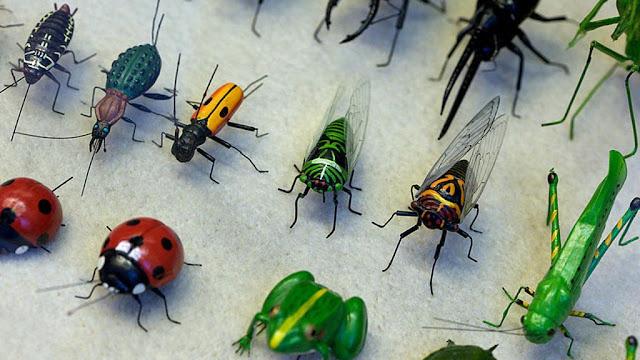 اسباب خطيرة لانتشار الحشرات المختلفة في المنازل