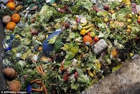 France Bans Food Waste, To Give Food To Charities and Food Banks