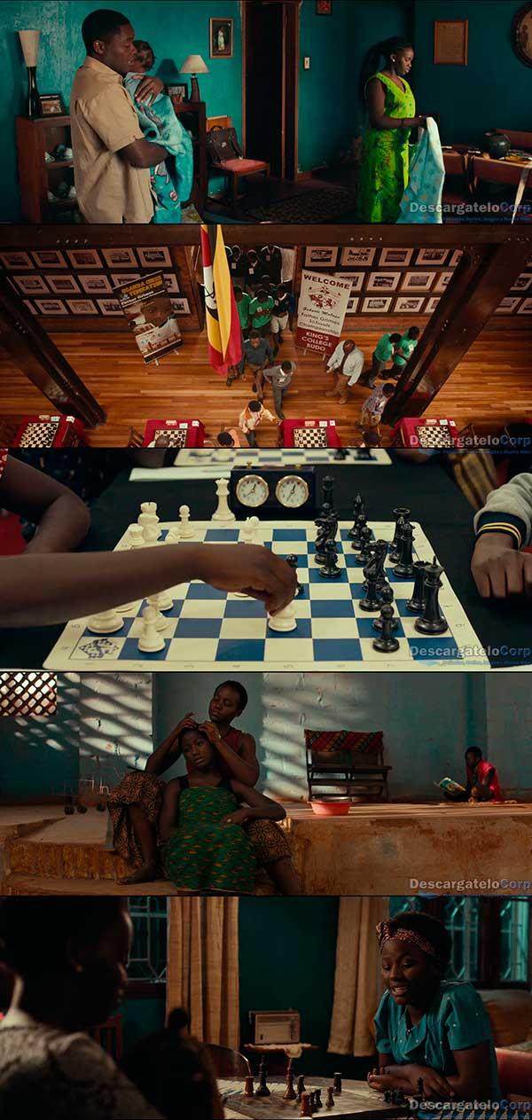 Reina de Katwe (2016) HD 720p Español Latino