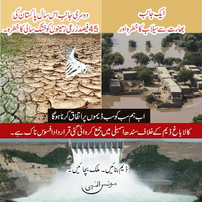 کالاباغ ڈیم کے خلاف سندھ اسمبلی میں جمع کروائی گئی قرارداد افسوس ناک ہے۔