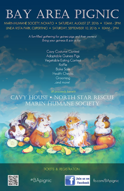 Bay Area Pignic 2016 Guinea Pig Rescue Fundraiser