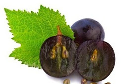 You must know !!! Seeds Of Grapes Can Reduce CHOLESTEROL