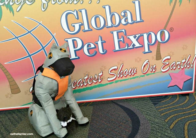 Little Oz and Sleepypod's Duke at Global Pet Expo