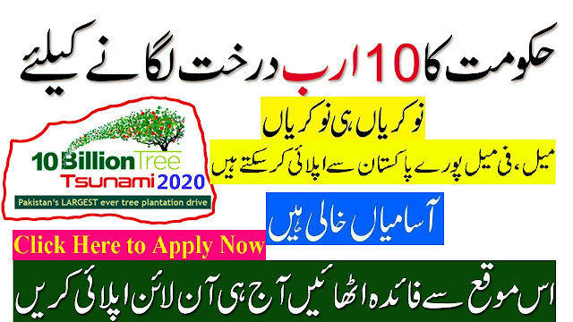 Ten Billion Tree Jobs 2020 Apply Now