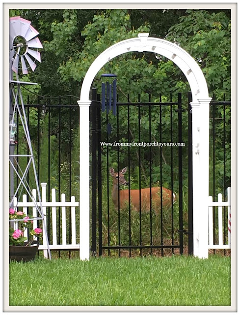 Suburban Farmhouse Backyard- Cottage Garden-White Arbor-Picket Fence-From My Front Porch To Yours