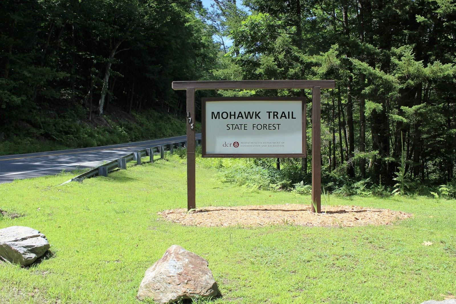 Walking Man 20 20 Mohawk Trail State ForestNorthern Berkshires