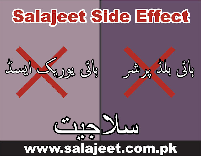 silajit side effect