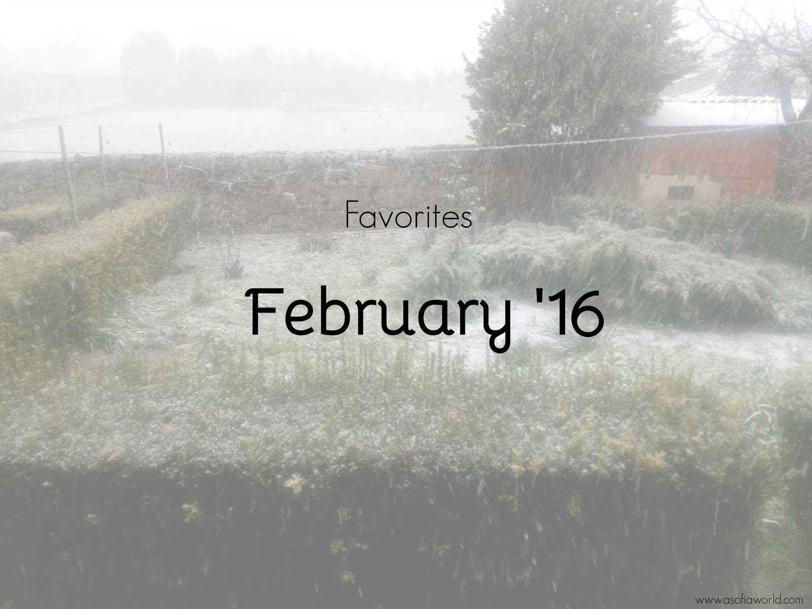 Favorites: February 2016