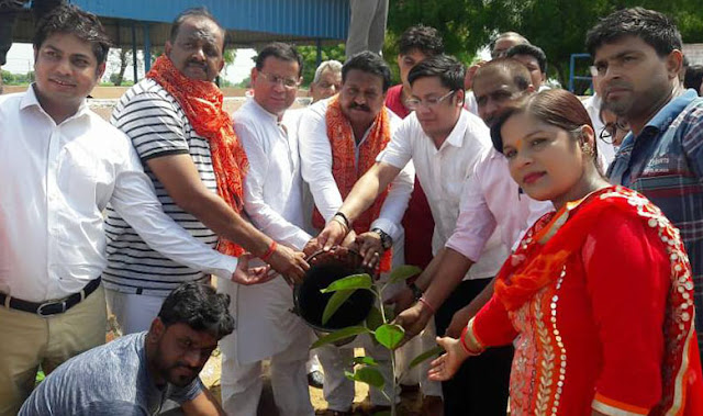 Planting organized by Bhagat Shree Mewaram Memorial Trust in Gaushala Tigaon