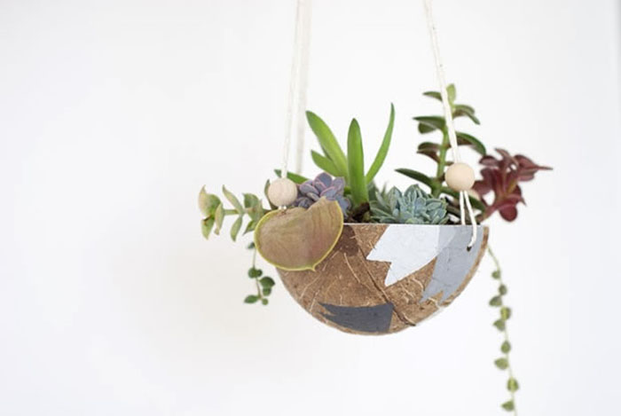 tips-deco-5-maneras-decorar-con-plantas