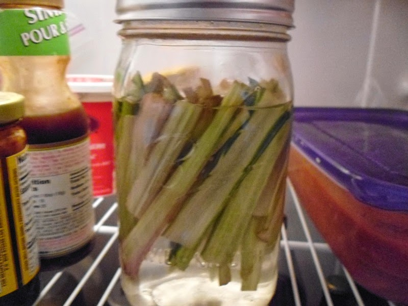 Stems in fridge
