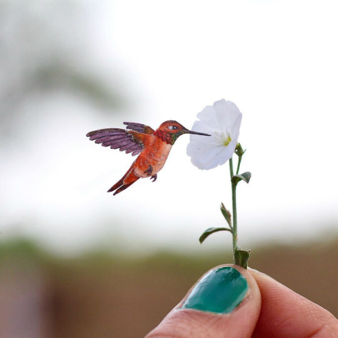 Rufous Hummingbird Miniature Paper Bird