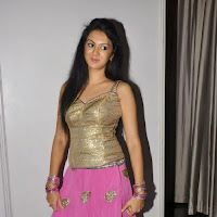 Kamna jethmalani photos at cccup 2013 launch
