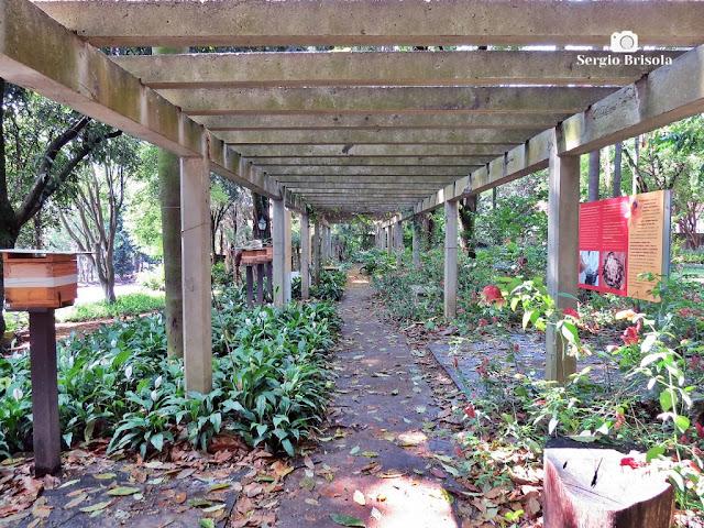 Vista do Apiário do Museu do Instituto Biológico - Vila Mariana - São Paulo