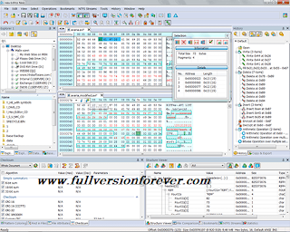Hex Editor Neo Ultimate Edition for windows with Patch