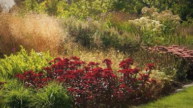 El jardín comunitario holandés Vlinderhof en una foto