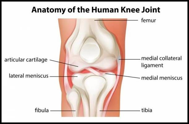 knees-hurt-after-exercise