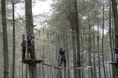Lokasi dan Harga Tiket Tretes Treetop Adventure Park