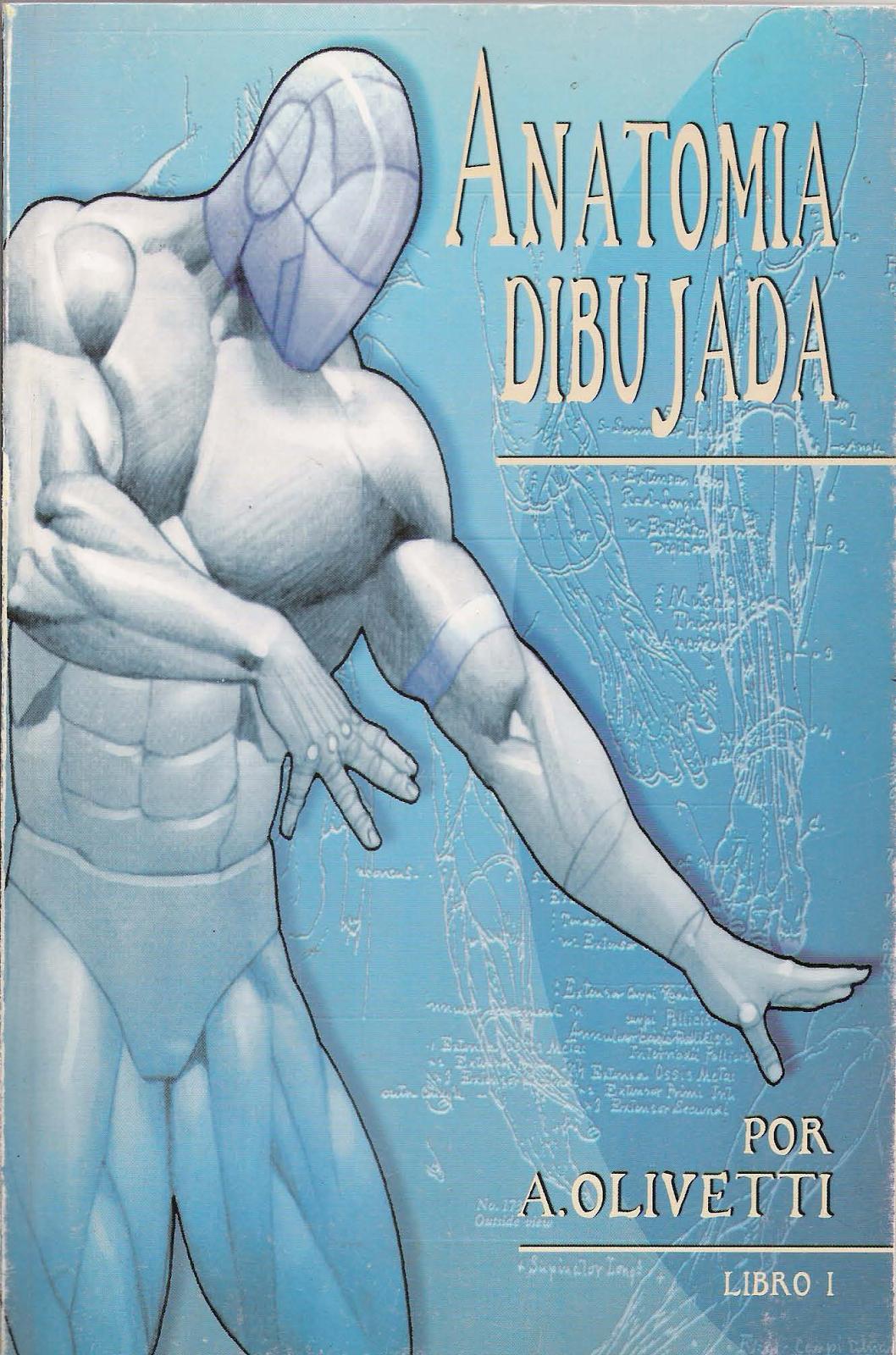 Sheigon Art: Descarga Anatomía Dibujada - Ariel Olivetti