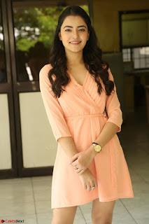 Rukshar Mir in a Peachy Deep Neck Short Dress 128.JPG