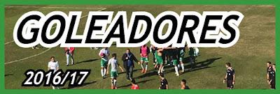http://divisionreserva.blogspot.com.ar/2017/06/tercera-de-ascenso-201617-goleadores.html