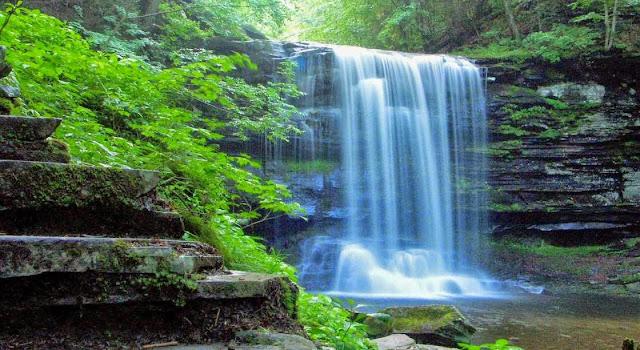 Agua y sales minerales disueltas