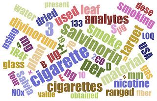 What is inside the smoke of hallucinogen Salvia divinorum image 1