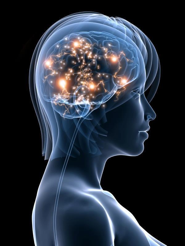 Diagnosis of memory loss