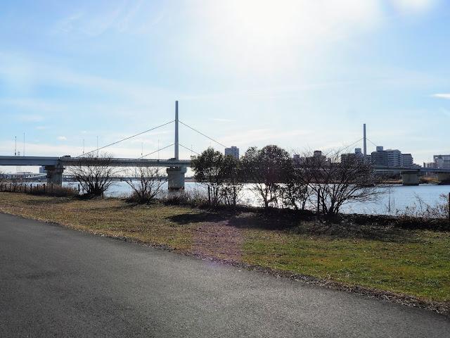 荒川自転車道 首都高小松川線