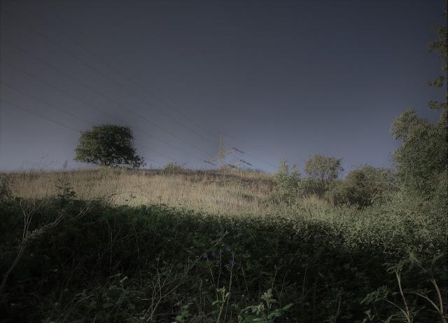 Dunkles Grauen Thüringen Wald Dämmerlicht