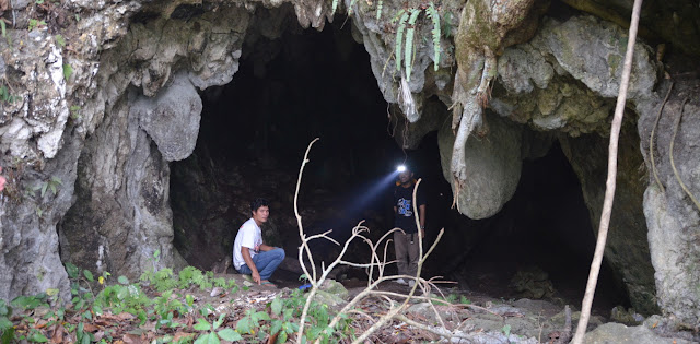 Arrival of modern humans in Southeast Asia questioned