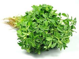 fenugreek leaves health benefits in urdu