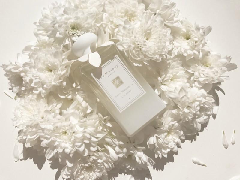 Mariage Posy Bouquet Blanc Lavande Latte Roses Blanches Avec