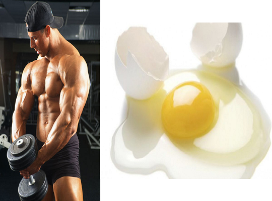Tips Whole Eggs Better Than Egg Whites For Muscle Building, Study Finds