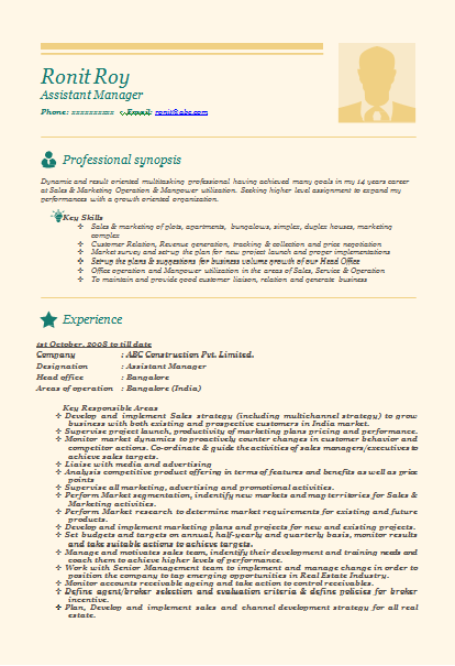 attractive resume format for experienced