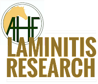 AHF laminitis research