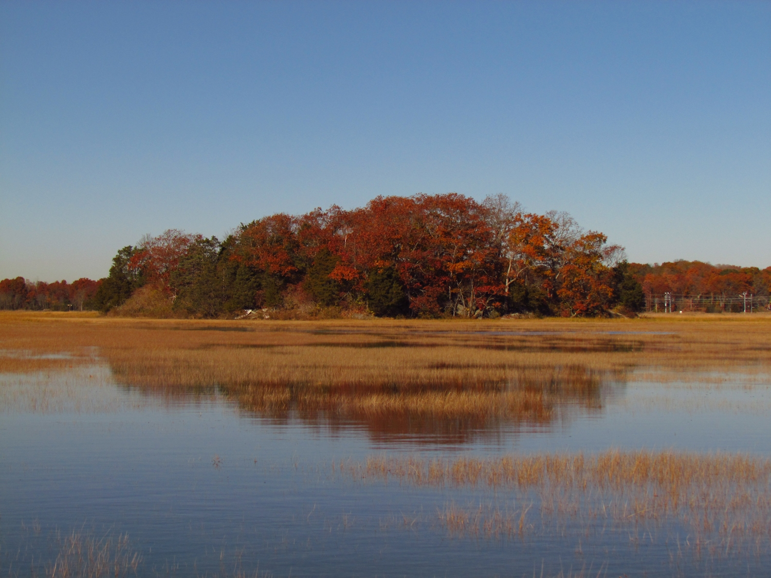 cedar island Cedar island, nc heritage 599 likes this site is for those who have roots based in cedar island, nc the purpose is to share stories and photos of.