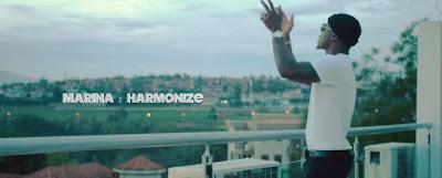 Marina Ft Harmonize - Love You Video