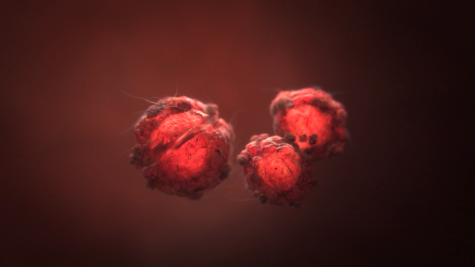 How to create Cell Division with Houdini Vellum | CG TUTORIAL