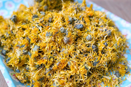 Benefits of Calendula and How to Make Calendula Salve