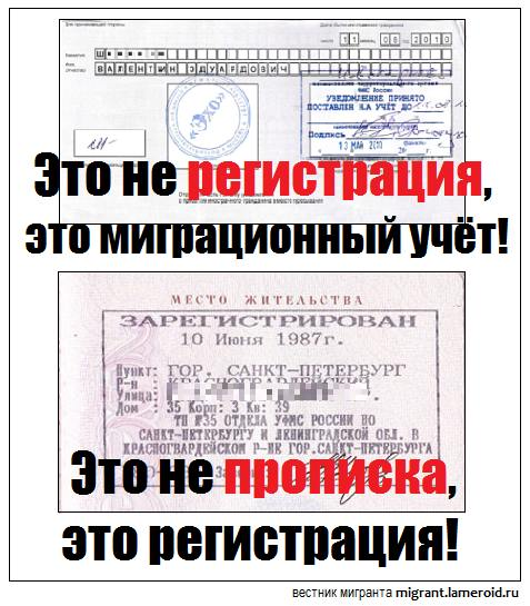 7 распространённых заблуждений среди мигрантов о российских законах