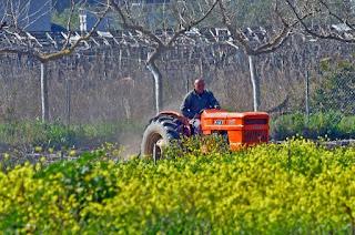Μέχρι τις 15 Ιουνίου οι αιτήσεις ενίσχυσης αγροτών για το 2018