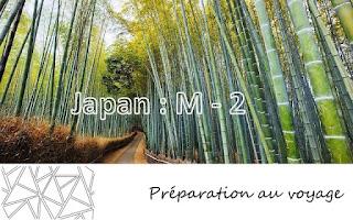 http://wearesmallandtheworldisbig.blogspot.be/2014/01/preparation-japon-m-2.html
