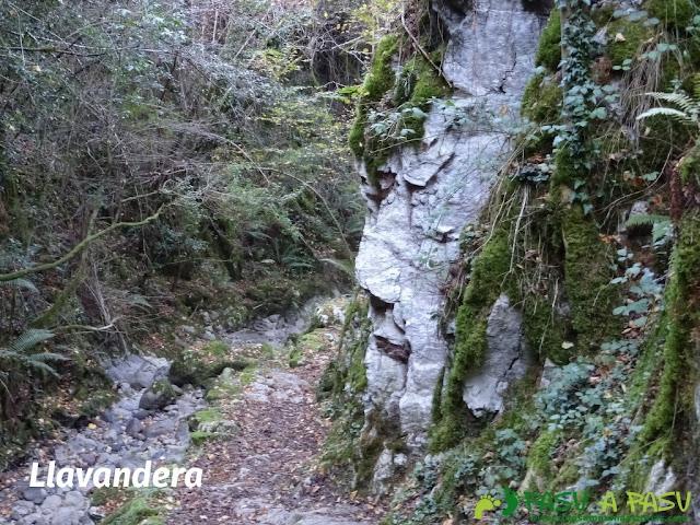 Llavandera en la ruta de Beyu Pen