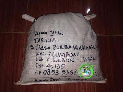 Benih pesanan TARKIA Cirebon, Jabar   (Setelah Packing)